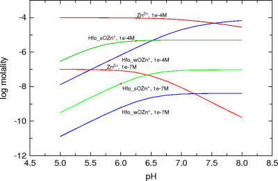 Sorption of zinc on hydrous iron oxides